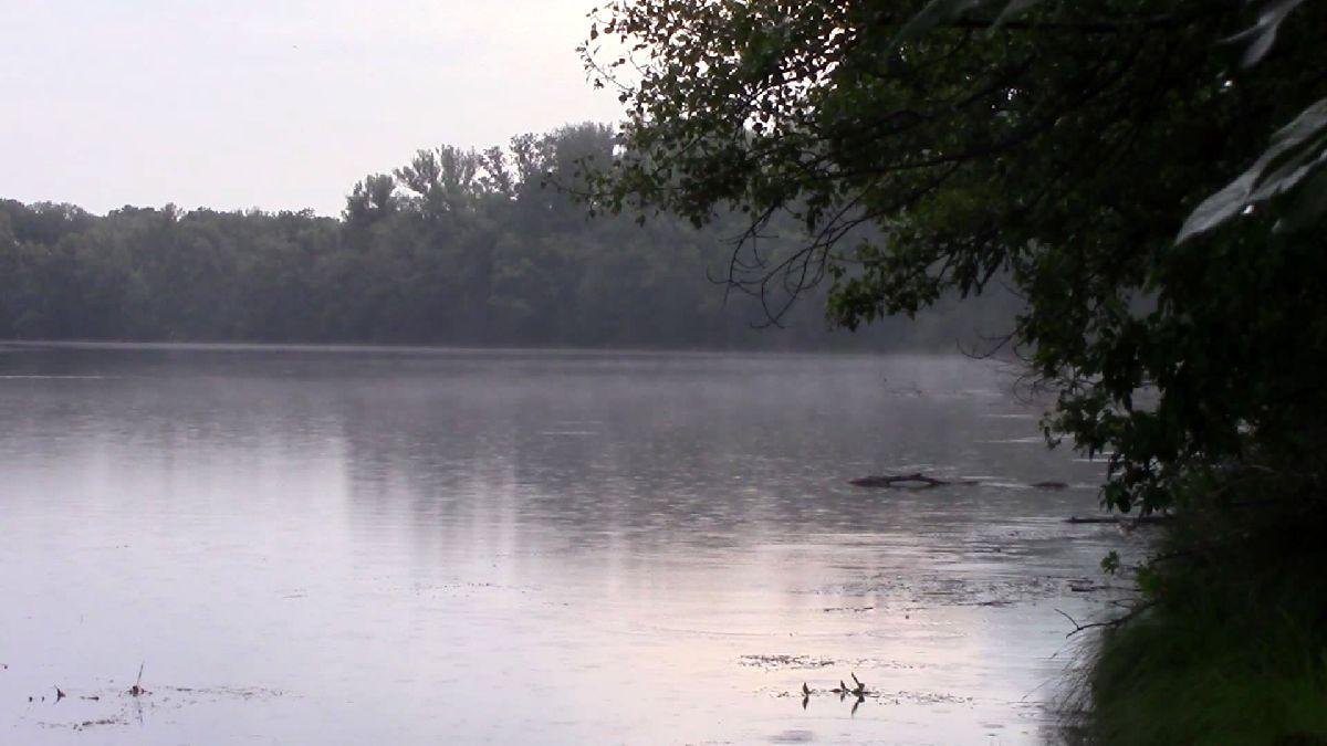 Donau-Oder-Kanal, Nebel 1
